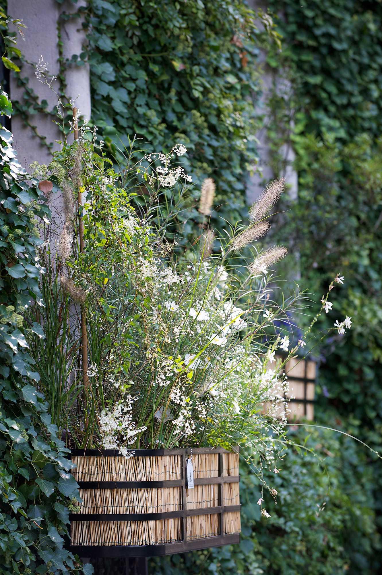 horticolario_025