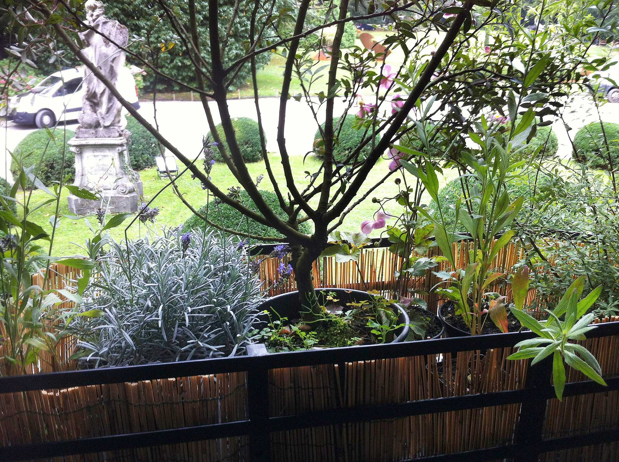 horticolario_046