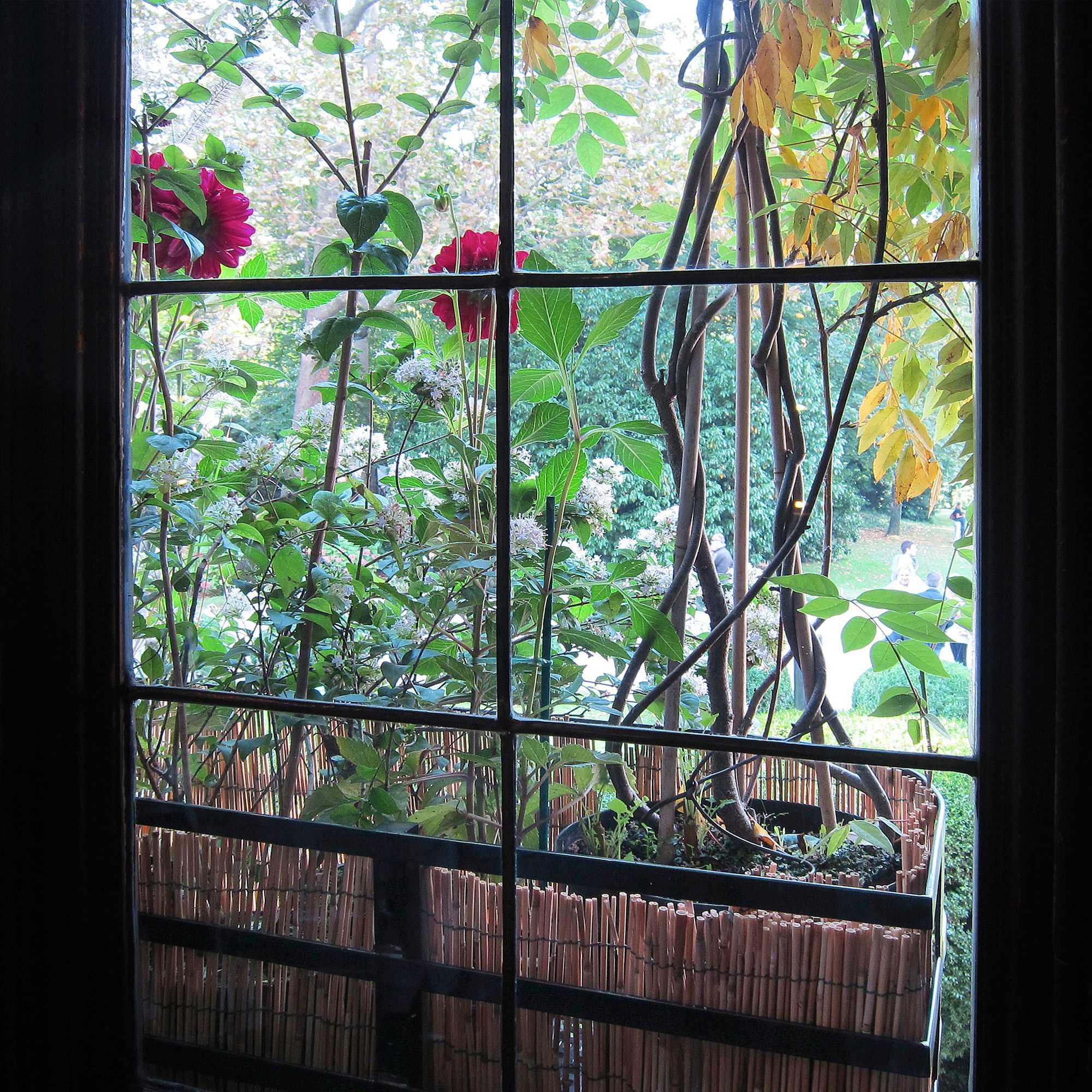 horticolario_073