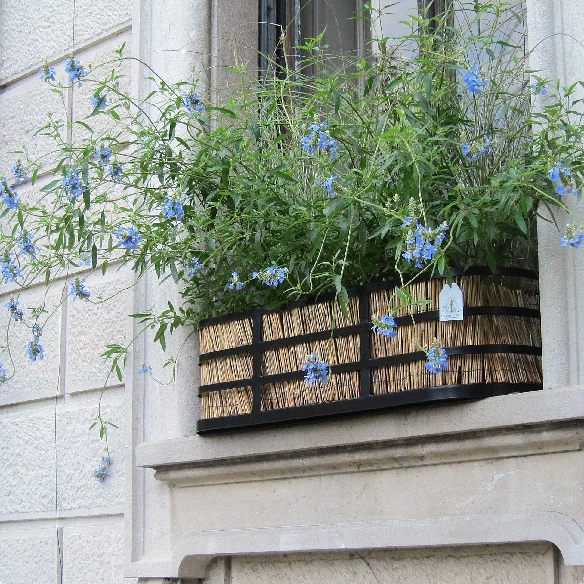 horticolario_100