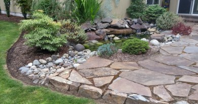 Winterizing your Pacific Northwest yard. Our Top 7 list to prepare your yard and garden for spring.