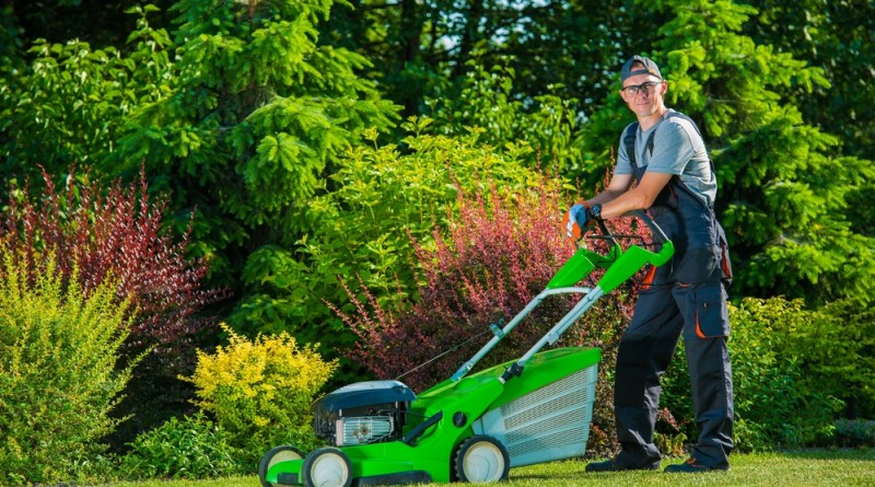 Levy's Landscaping and Lawns Quality Maintenance
