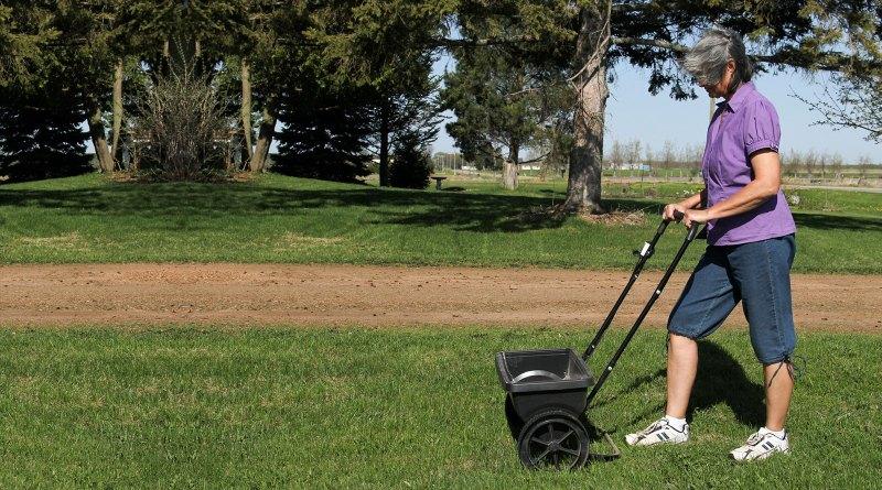 choose a balanced fertilizer, such as a 10:10:10 mix