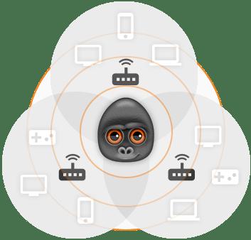 debookee-wifi-model