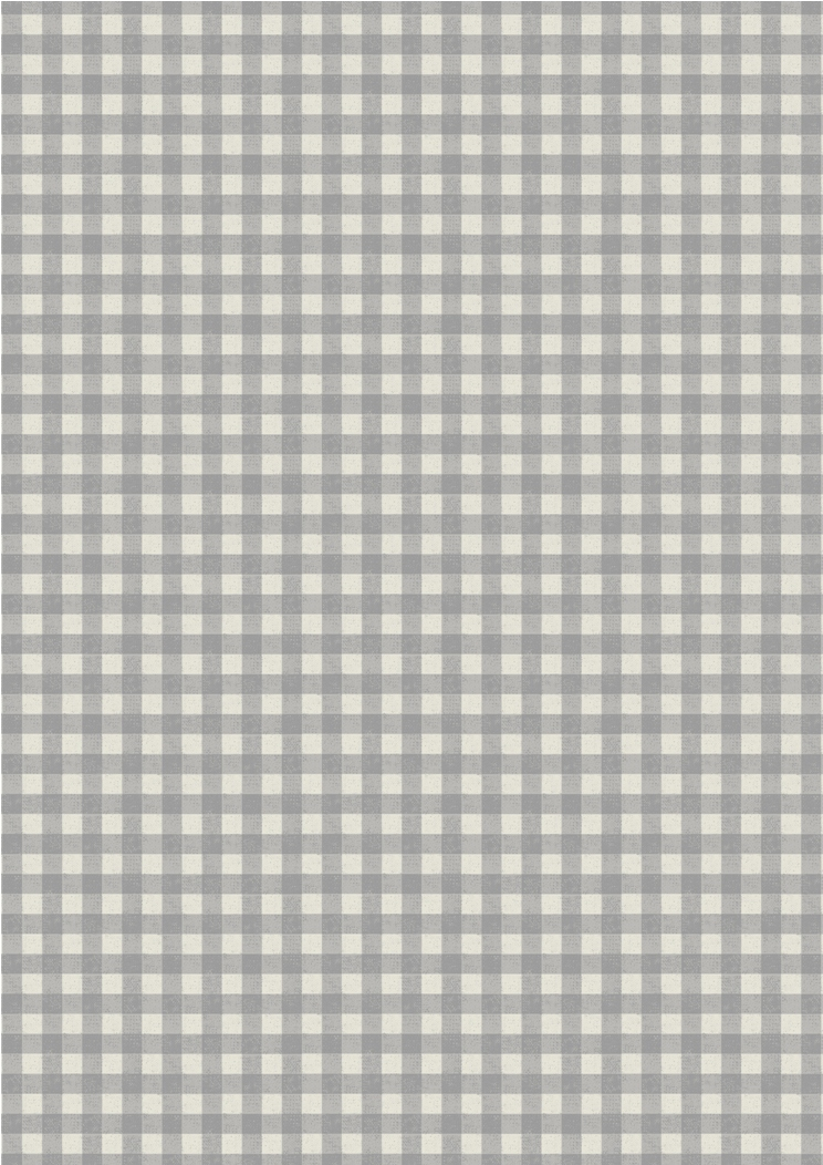 A213.2 - Grey rustic gingham