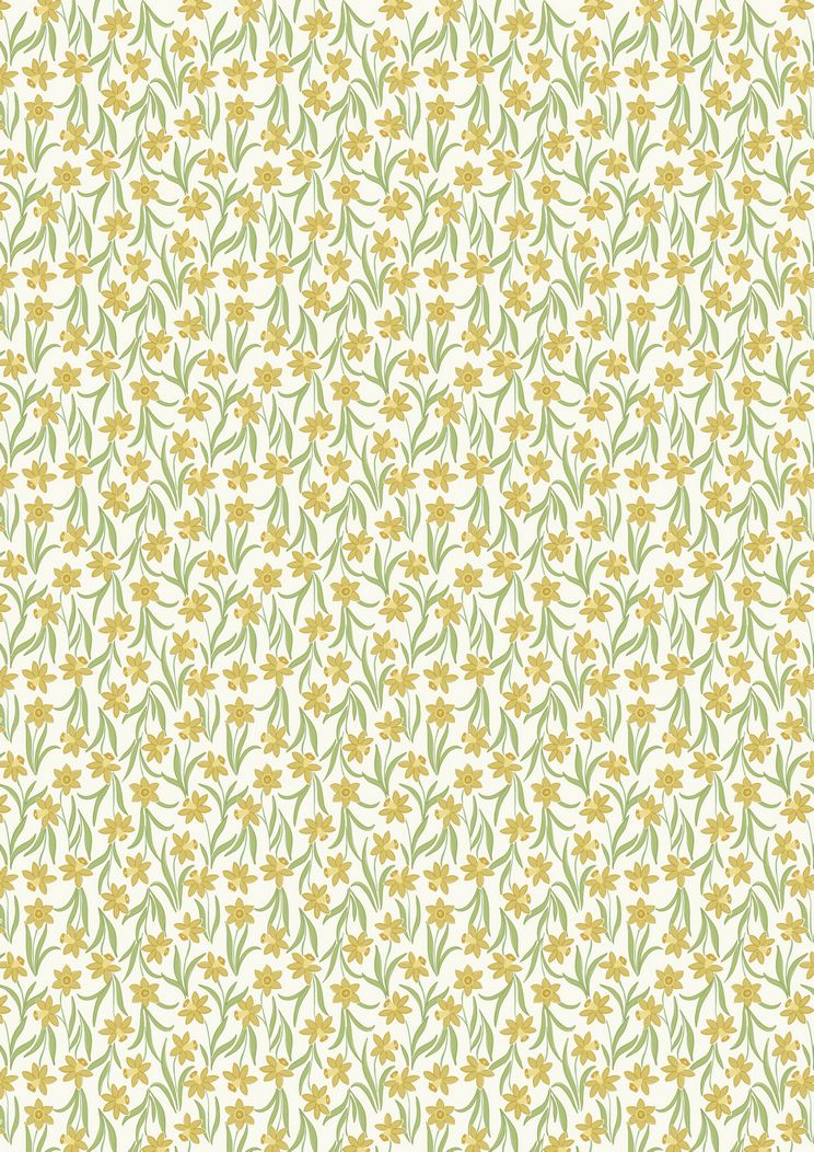 FLO3.1 - Daffodils on white