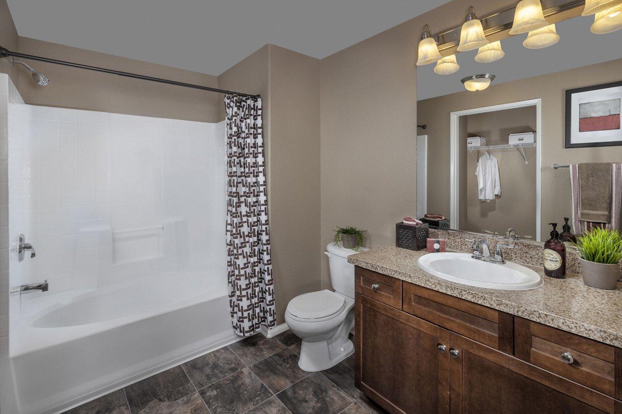 Homecoming At Terra Vista Apartment Homes For Rent