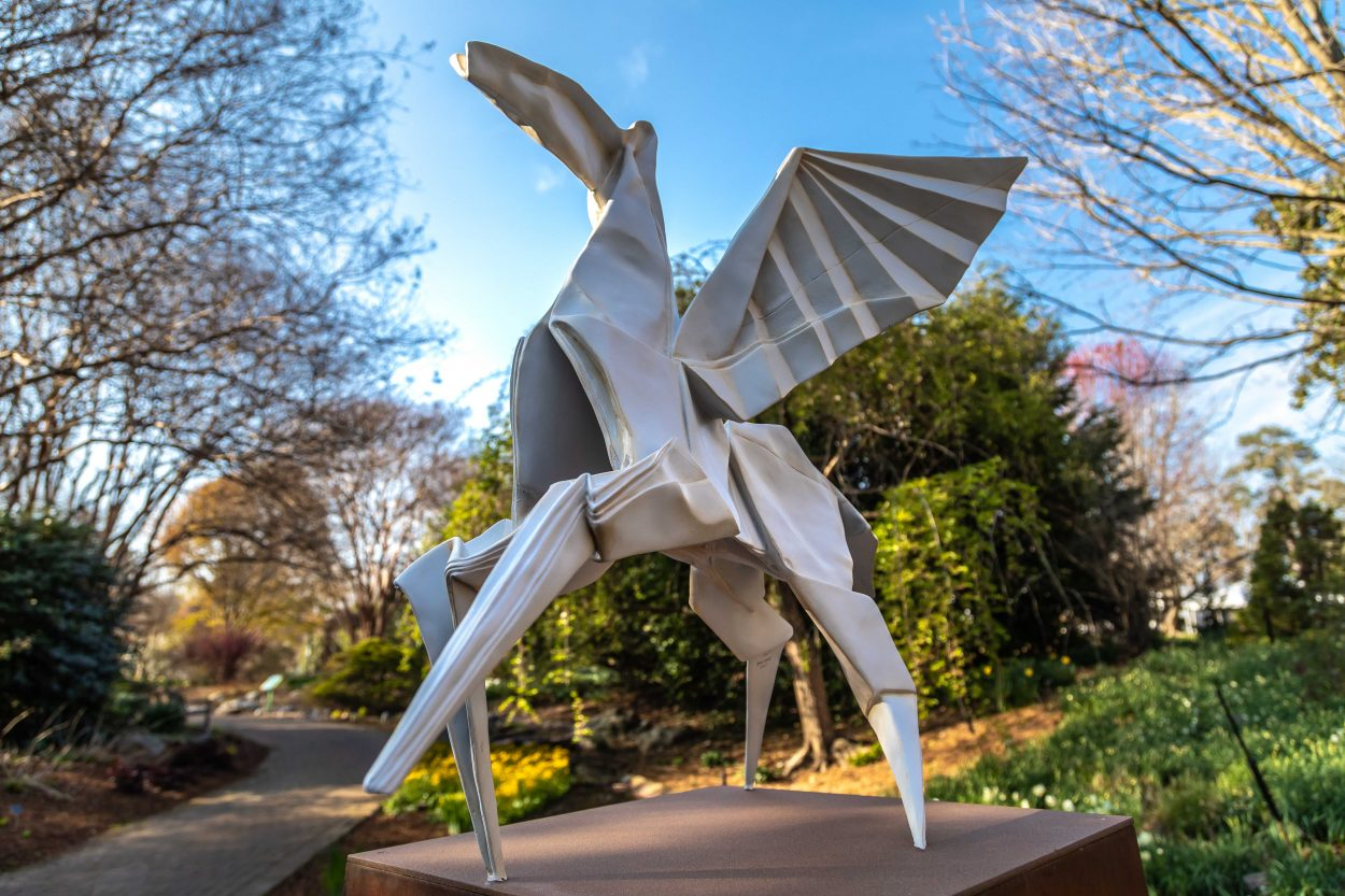 Origami In The Garden Lewis Ginter Botanical Garden