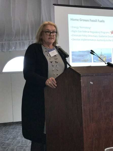 Caryl Pfeiffer, Speaker LG&E and Ku Services