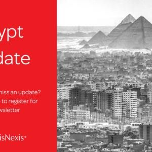 Egypt: Decision to Establish a Supreme Committee to Examine Airports Storage Areas
