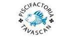 Cliente Piscifactoria