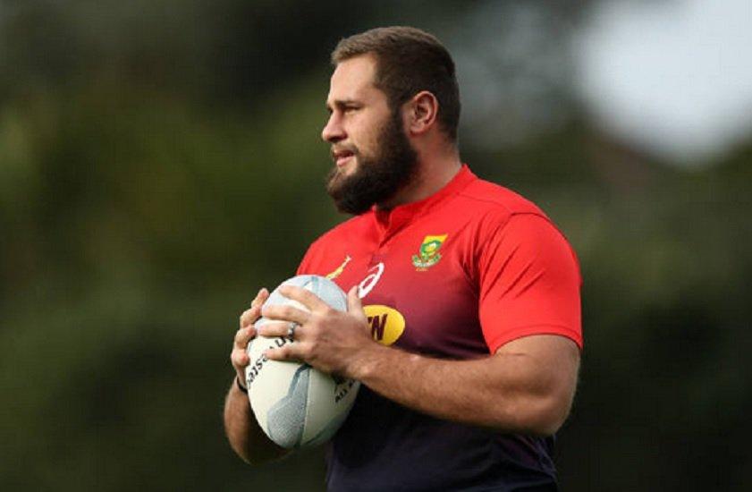afrique du sud thomas du toit en renfort rugby coupe du monde xv de départ 15