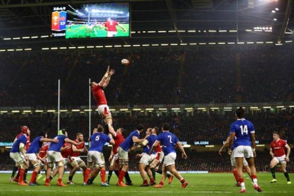 la france et l'italie écartées d'un tournoi le comité organisateur dément rugby xv de départ 15