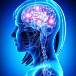 la-farmacia-del-cerebro