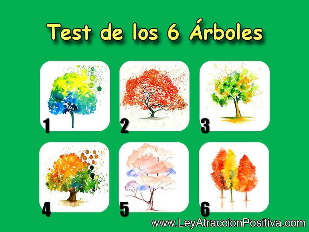 test-de-los-6-arboles