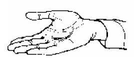 manos01