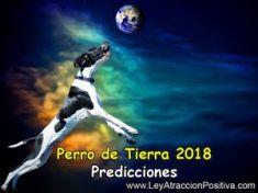 Perro de Tierra 2018: Predicciones