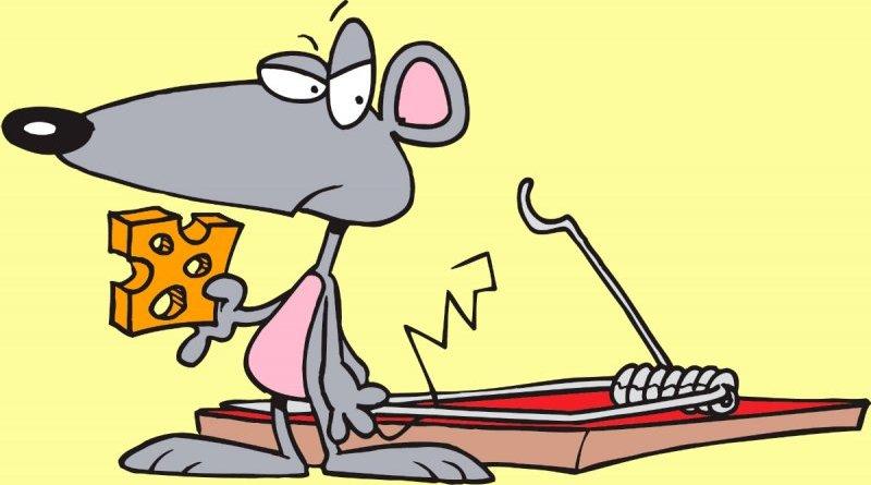 El pequeño ratón indisciplinado-Fábula de animales