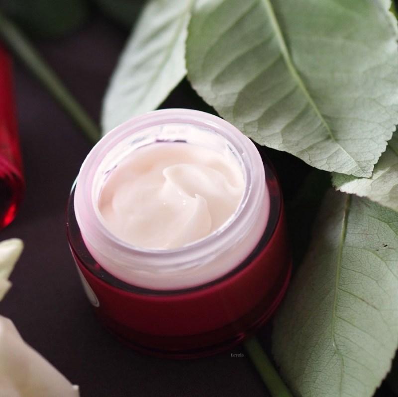 cream rose illuminator