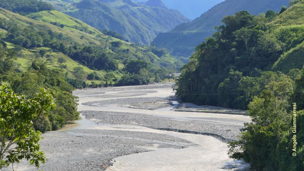 Il bacino del fiume Huancabamba, in Perù, è uno dei probabili areali di distribuzione della peperomia polybotrya in natura.