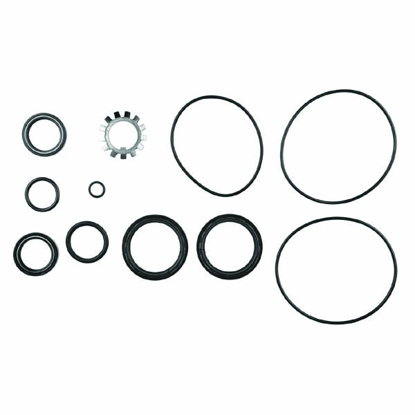 Lower Gearcase Seal Kit, 280DP/290DP, 18-8358