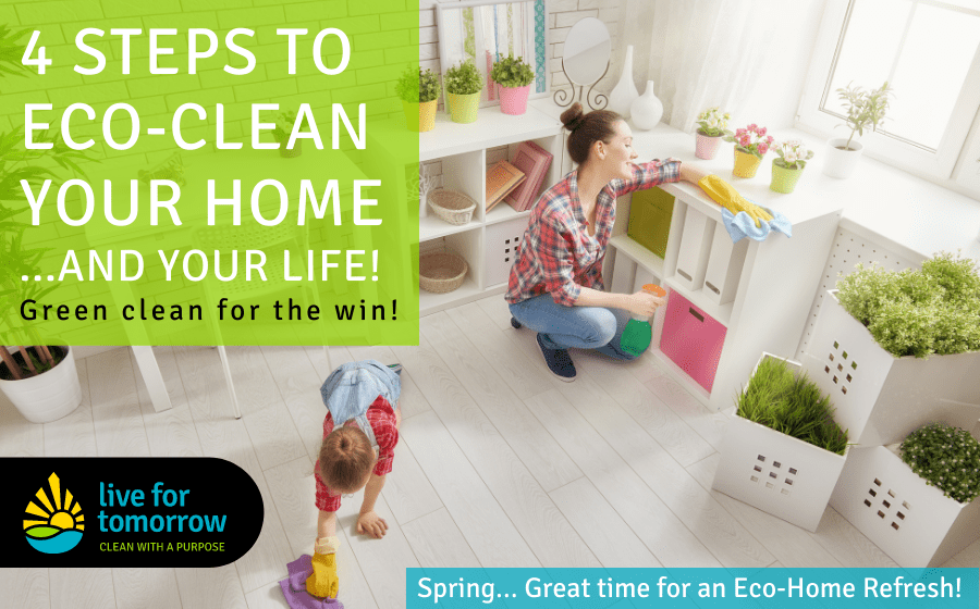 4 Steps to Eco-Clean Your Home