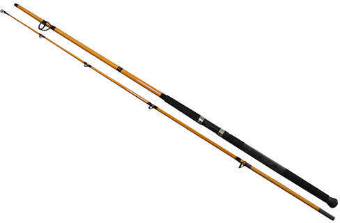 Daiwa FT Surf Spinning Rod 10' Length, 2 Piece Rod, 10-20