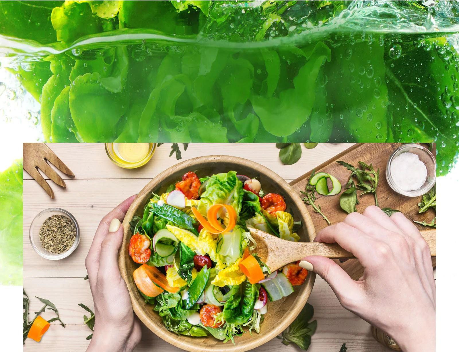 Mantén la comida fresca durante más tiempo1