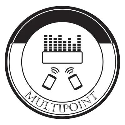 Parlante Portátil LG MusicFlow P5-NP5550, Conectividad