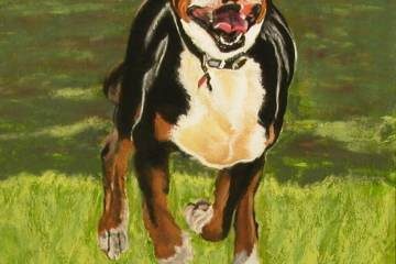 "© Laura Gabel, ""Doc"". Pastel, 11x14. Private collection."