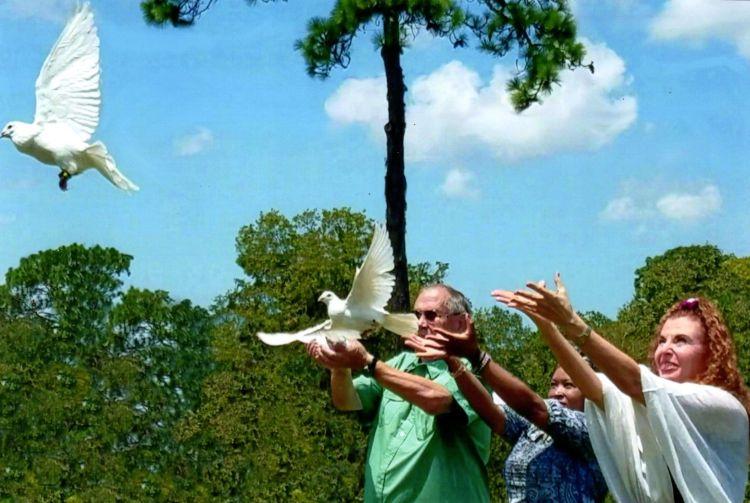 memorial - ken's dove