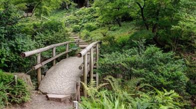 sankeien-gardens