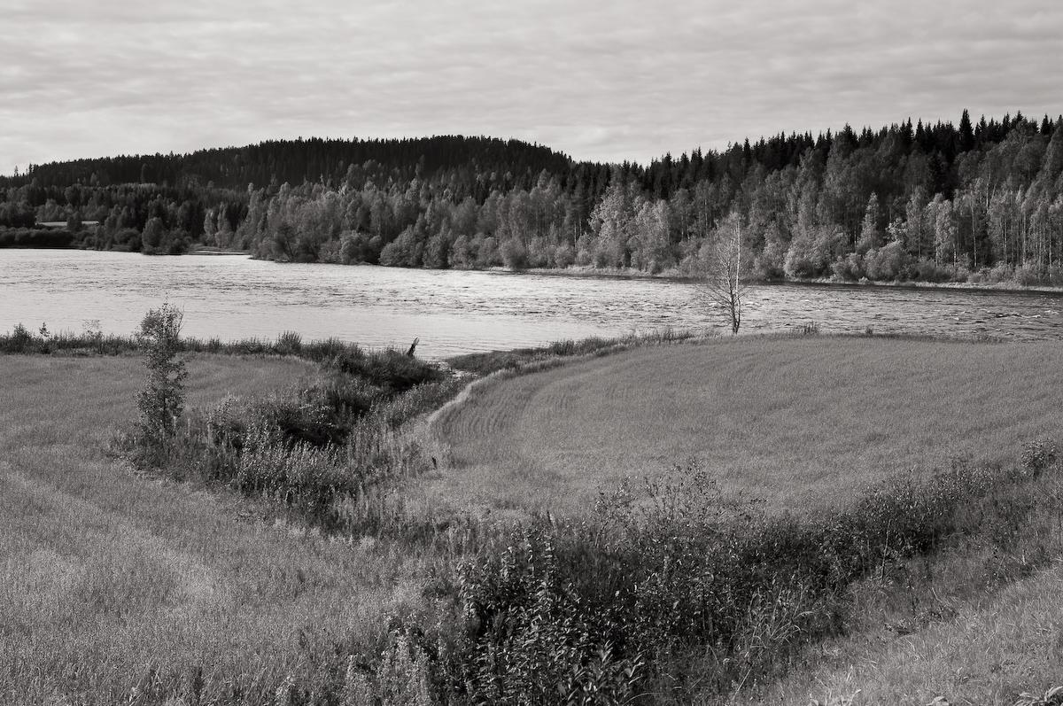 Landskap Rödåsel, Västerbotten. Fotograf Lars-Göran Norlin