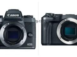 Canon EOS M6 vs M5