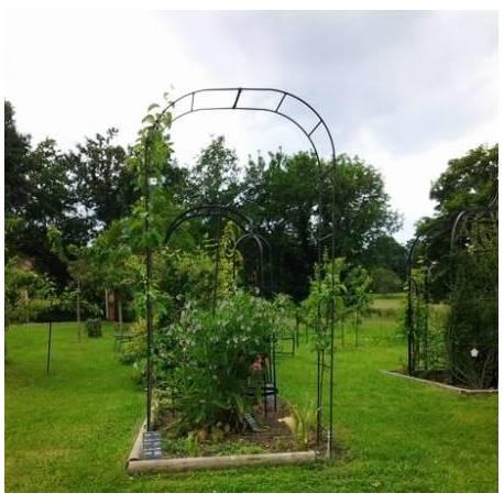 grande arche simple arche a fleurs rosiers tuteur plantes de jardin passage en fer forge 40x170x250cm