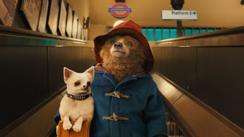 photo-Paddington-2014-6