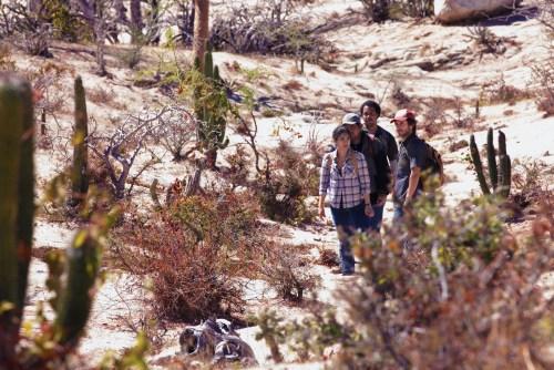 photo.Desierto.181981