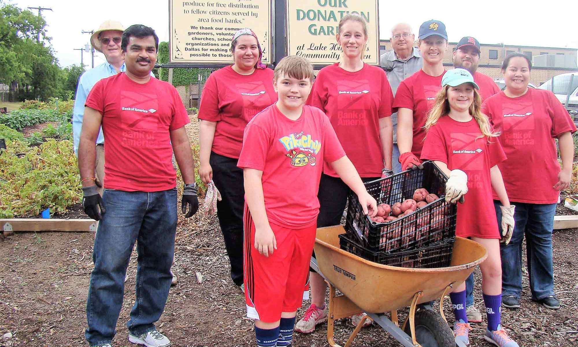 Volunteers from Bank of America Participate in Community Service, Potato Harvest Donation to local food bank, 2017