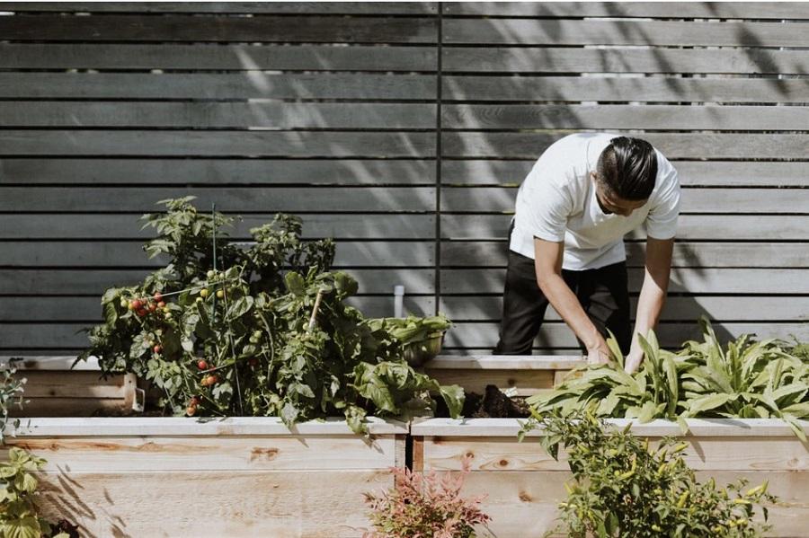 Jardiner dans son jardin, sa terrasse ou son balcon
