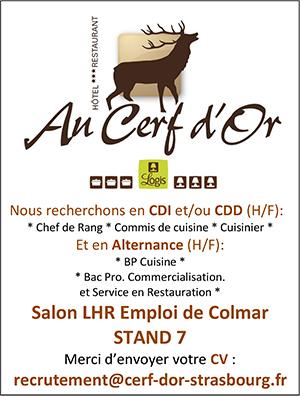 Commis De Cuisine Strasbourg