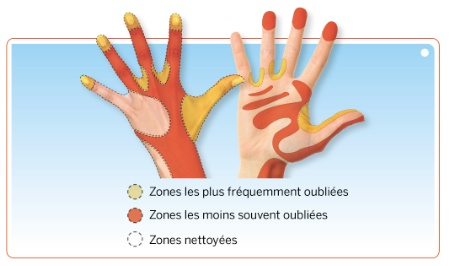 Hygine En Fiche Pratique Le Lavage Des Mains