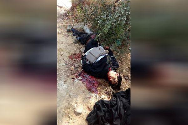 Hyderabad Terrorist Killed