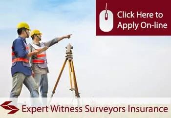 expert witness surveyors liability insurance