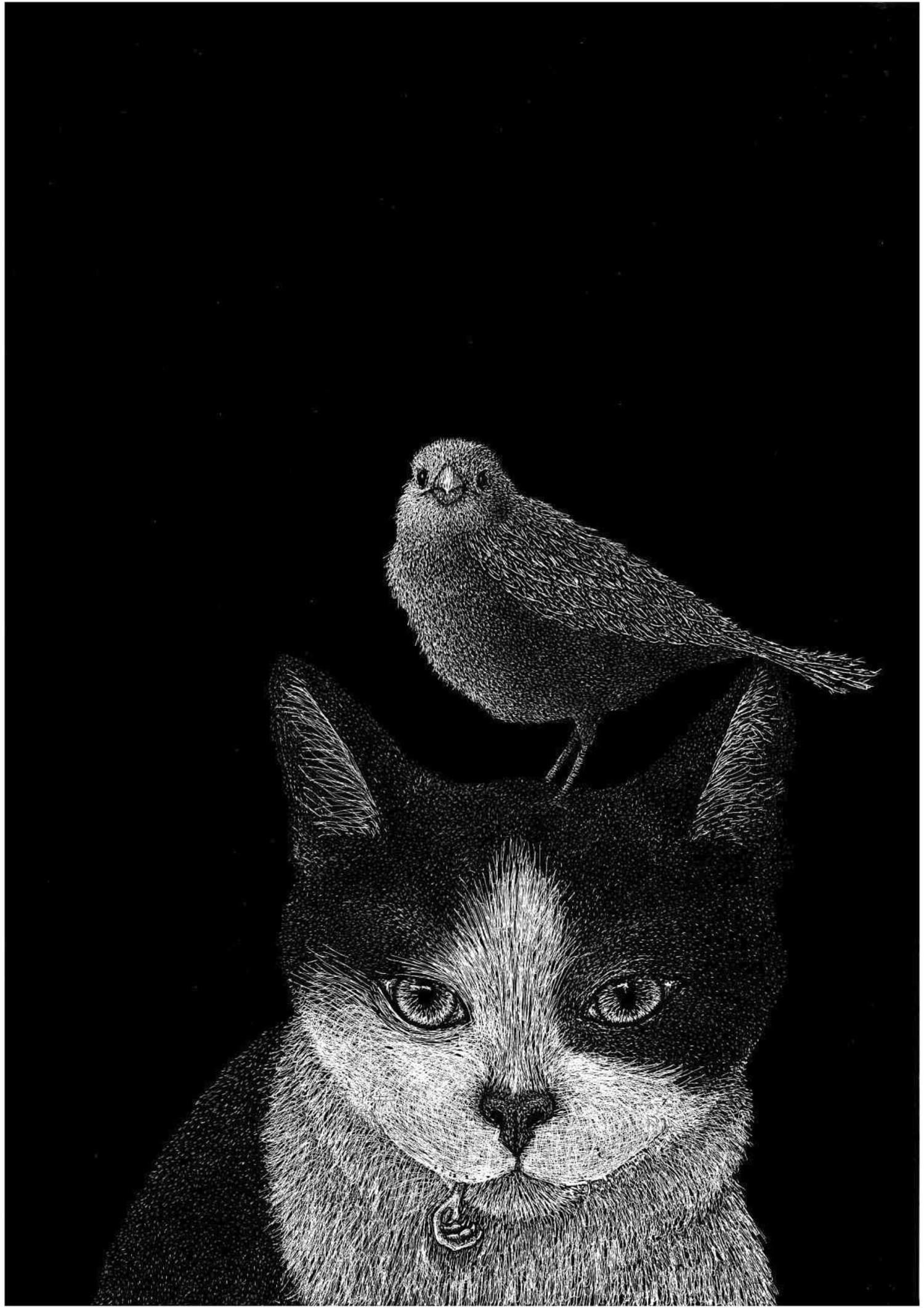 Il gatto e i due passeri - Lia Mariani