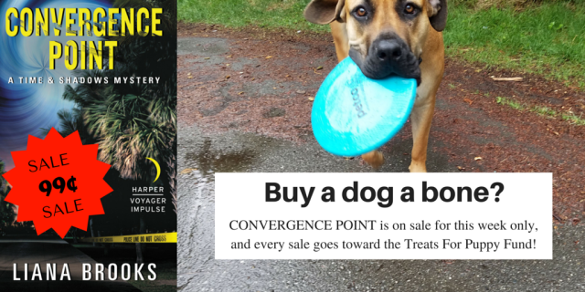 Convergence Point Sale 2