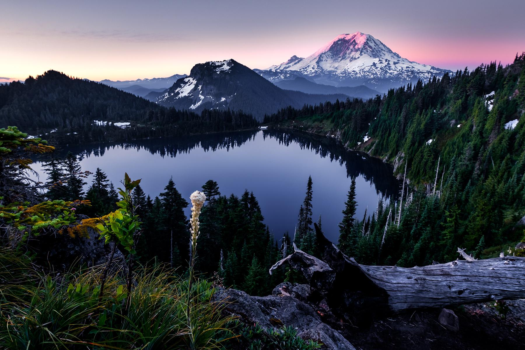 美國雷尼爾山國家公園(Mt. Rainier)旅游攻略游記 - 聊美國