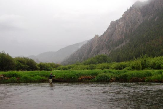 Cache La Poudre River Fly Fishing