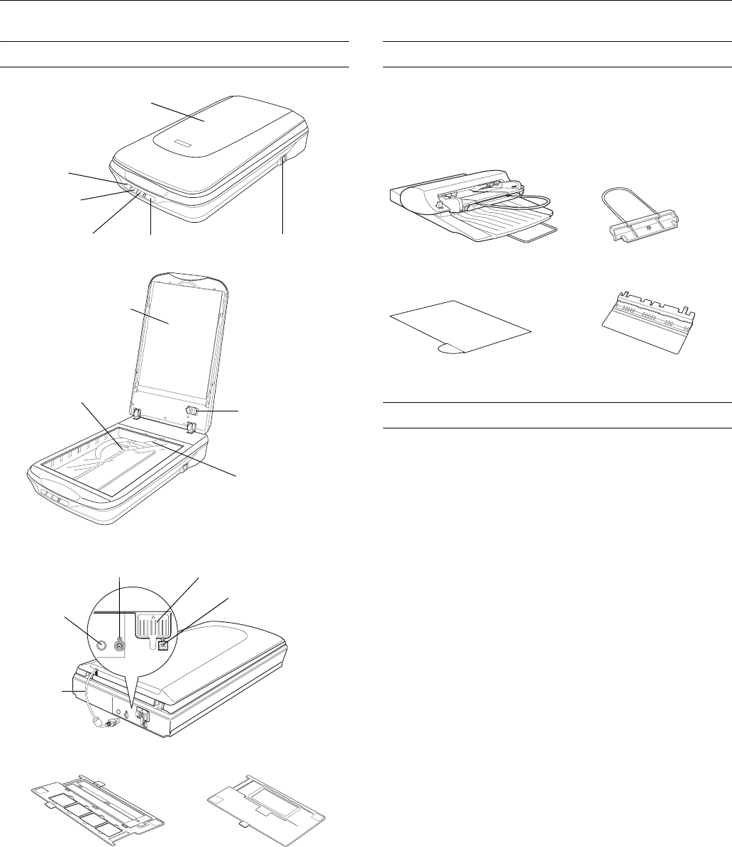 Manual Epson perfection 4490 photo (page 1 of 10) (English