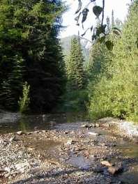 Libby Creek