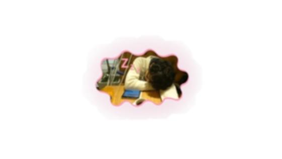 眠いっすよおおおおおおお...